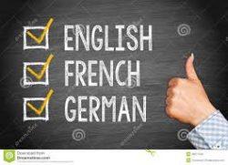 Intensieve taaltraining voor professionals